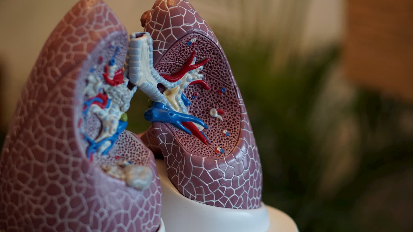 Prevent lung disease