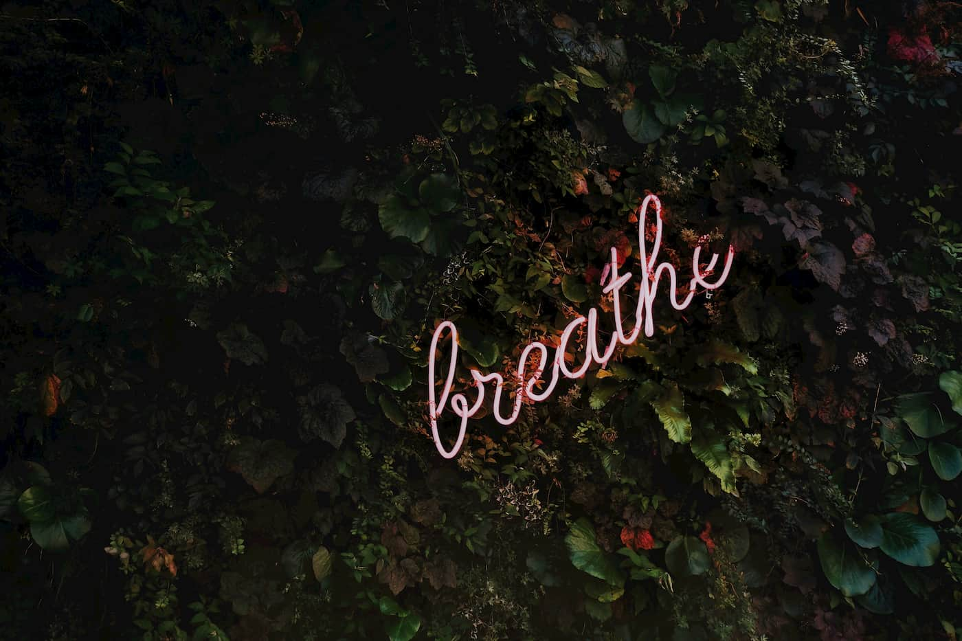 a neon sign that says breathe